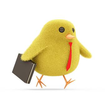 Little Chicken Goes for a Work with a Suitcase